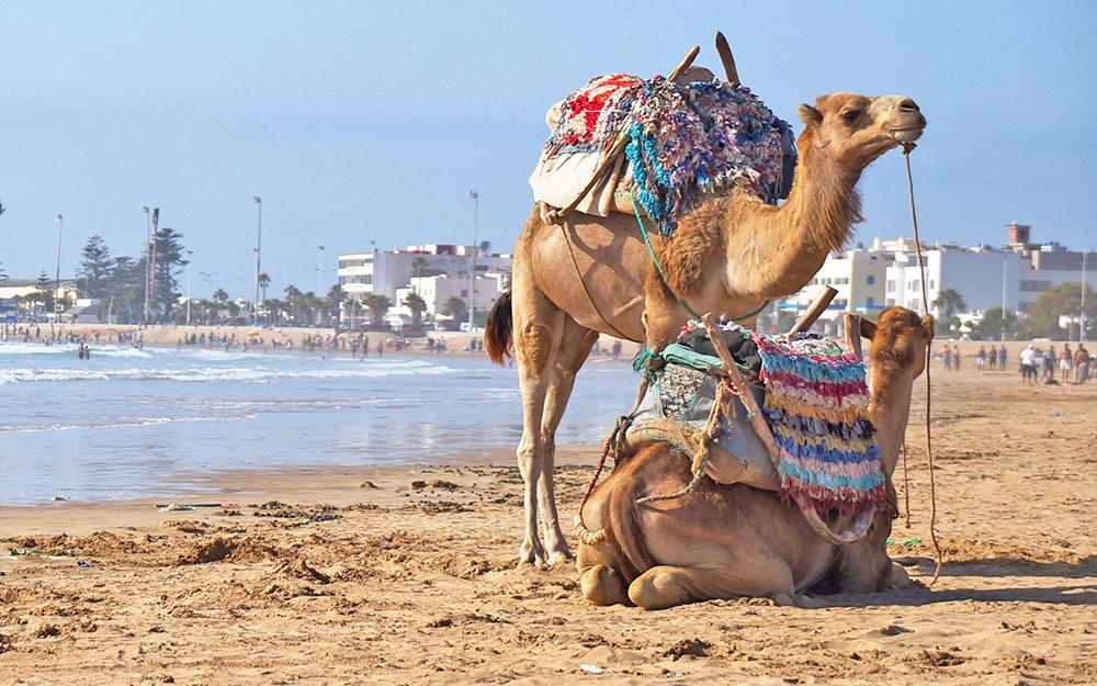 Essaouira Kite spot