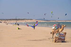 Kitesurf, découvrir le spot d'Essaouira